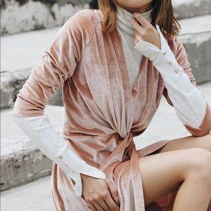 Zara Nude Velvet Dress